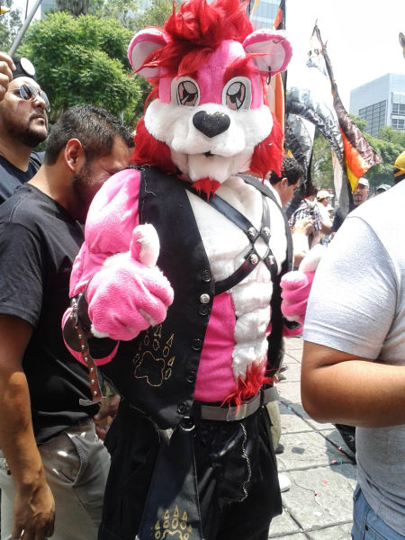 Una peculiar pantera rosa siempre dispuesta a posar para la cámara.