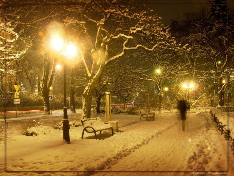 Winter_by_tomeq