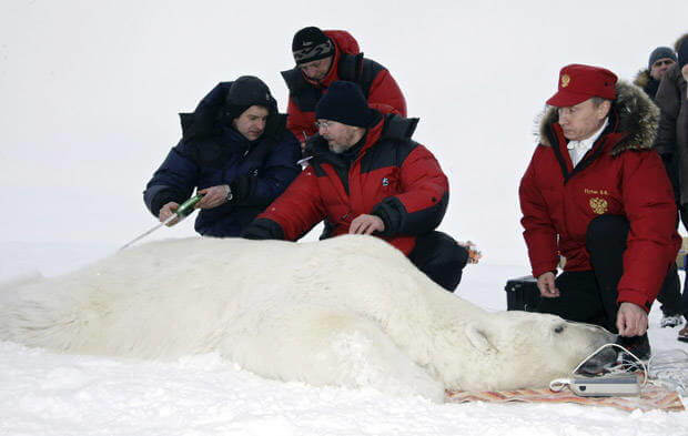 93-putin-oso-polar