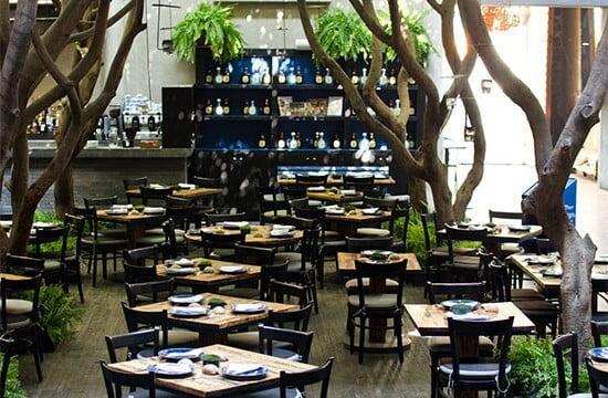 restaurante azul historico para cenas románticas