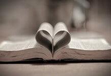 Reflexión sobre el amor incondicional