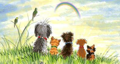 Cielo de las mascotas tras el puente arcoiris