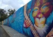 graffiti queretaro de tu arte a mi arte