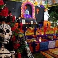 decoración de un altar de muertos