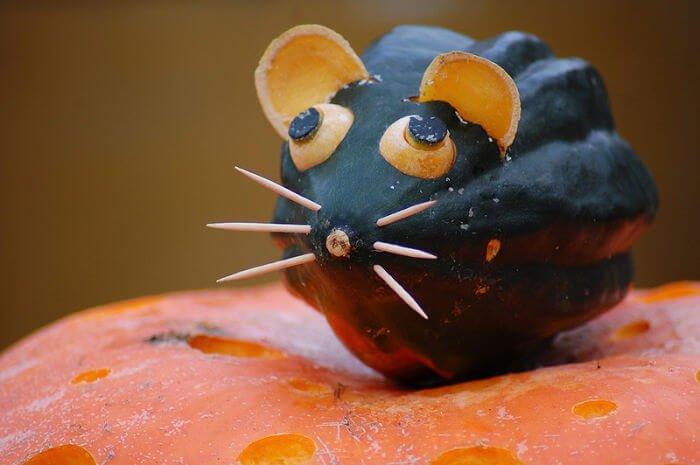 pumpkinhalloween ideas