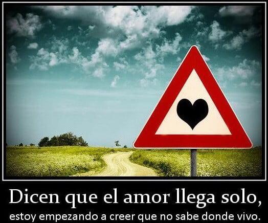 el amor llega solo