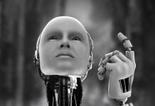 robots son sentimientos