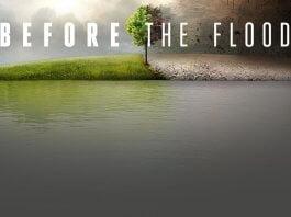 ¿De qué trata Before The Flood?