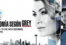 Grey's Anatomy temporada 2017