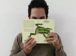 Reseña: Alfiler, una novela intimista de David Guajardo