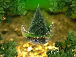 tener una navidad sustentable