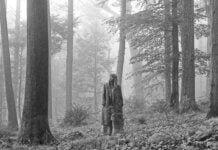 analisis de folklore taylor swift